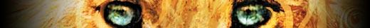 aslan_slice.jpg